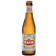 Logo of Bavik Big Bavik