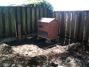 Photo: Laying the post foundations for the pen fence.