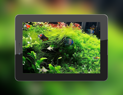 Aquarium 3D Live Wallpaper Apk 9