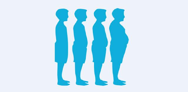 Overweight Test - Obesity Test
