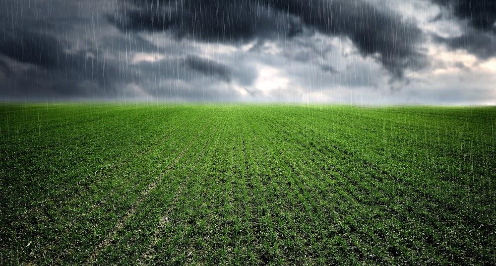 Rainy days forecast for four provinces - SowetanLIVE