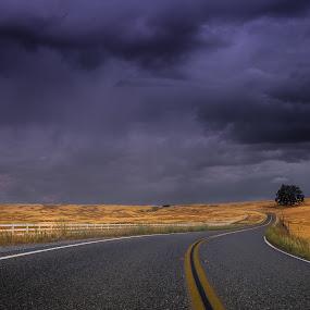Millville Plains by Becca McKinnon - Landscapes Prairies, Meadows & Fields ( field, fence, shasta, redding, oplain, millille plains, road, millville, storm, rocks, fields )
