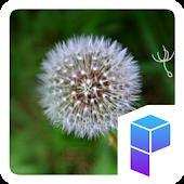 Dandelion Flower Theme