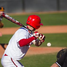 Swing by Chris Pugh - Sports & Fitness Baseball