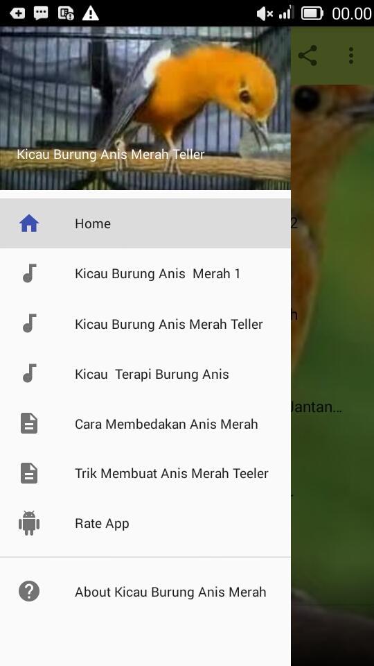 X Kicau Burung Anis Merah Teller 1 0 Apk Download Com Divo Kicauburunganismerahteller Apk Free