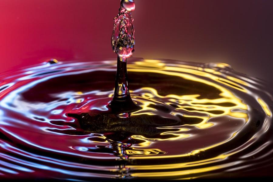 by Nirmal Kumar - Abstract Water Drops & Splashes