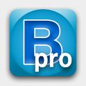 BeWorded Pro icon