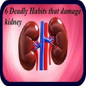6 DEADLY Things Damage Kidney 1.0 by popularp logo
