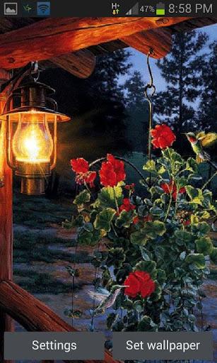 Flowers In Night LWP