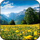 Summer Wallpapers HD (backgrounds & themes) APK