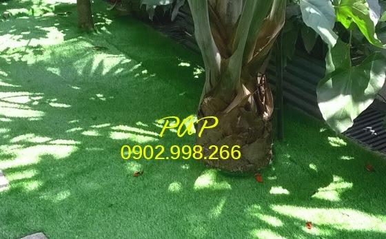Chọn lọc Thảm sân vườn khách hàng nên biết ra sao