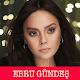 Download Ebru Gündeş - Müzikleri / Zil Sesleri For PC Windows and Mac