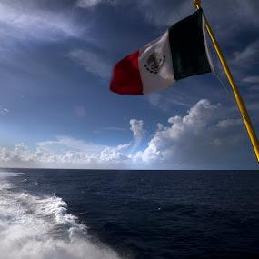Mexican flag by Cristobal Garciaferro Rubio - Products & Objects Signs ( water, flag, mexican flag, mexico, sea )