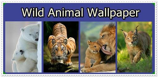 Descargar Wild Animal Wallpaper Para Pc Gratis última Versión