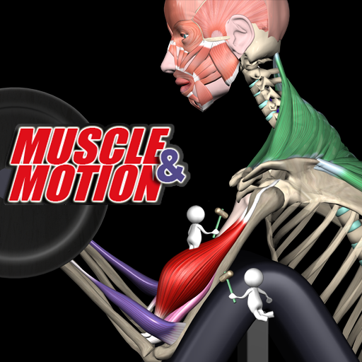Muscle and Motion - Strength – Apps bei Google Play