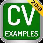 CV Examples 2019