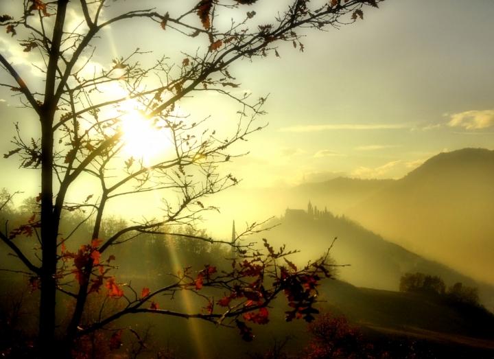Light and fog di fabian