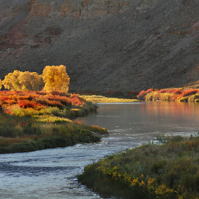 Gunnison Gorge by David Short - Landscapes Mountains & Hills ( color, fall, colorado, gunnison river )