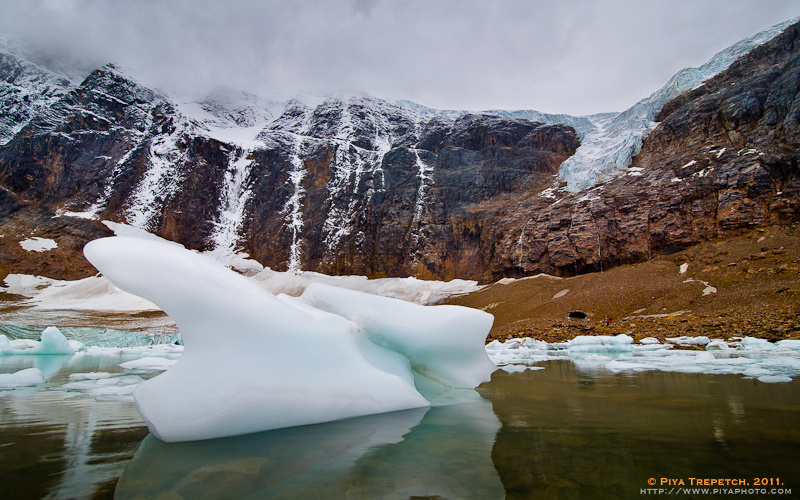 Photo: Angel Glacier Spreading Her Wings Prominently on Mount Edith Cavell above Cavell Glacier and Icebergs in Cavell Pond - Jasper National Park, Alberta, Canada