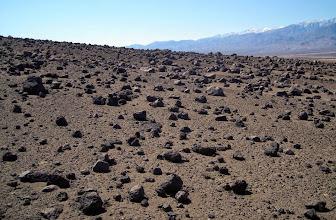 Photo: Ventifact Ridge