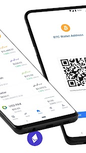 Blockchain Wallet. Bitcoin, Bitcoin Cash, Ethereum 2