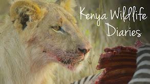 Kenya Wildlife Diaries thumbnail