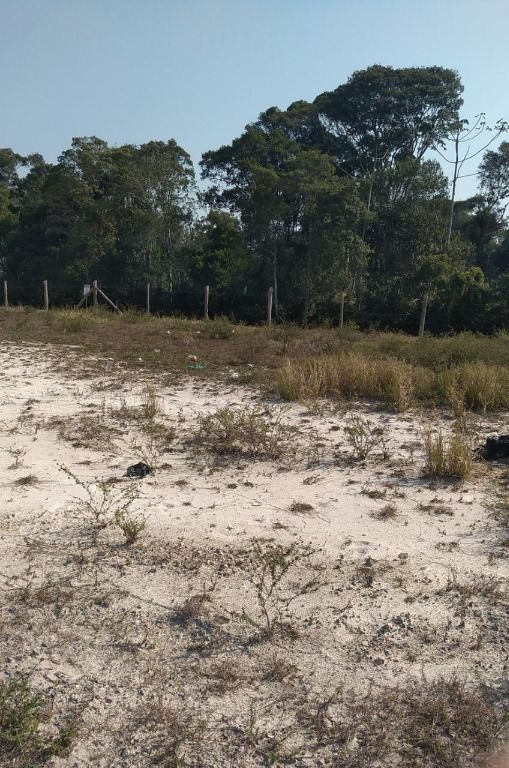Terreno à venda, 263 m² por R$ 155.000 - Parque Residencial Bosque da Mata - Tijucas/SC