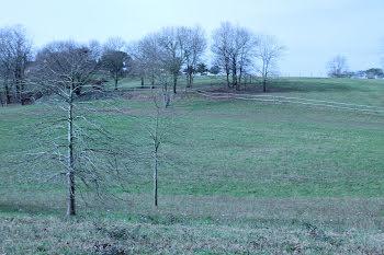 terrain à Mouscardès (40)