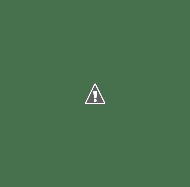 DECRETO DE LA MUNICIPALIDAD DE HERNANDO.
