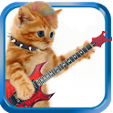 Dancing and Singing Funny Pets icon