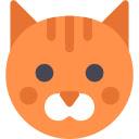 Cute Cats & Kittens Wallpapers HD Cat New Tab