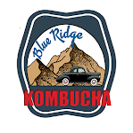 Blue Ridge Berry Kombucha 10oz