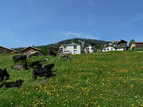 Photo: Graubünden, Stierva