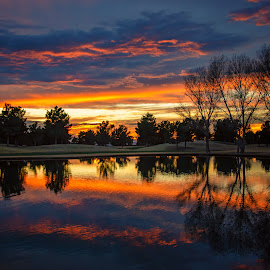Golf Course Sunset by Rita Taylor - Landscapes Sunsets & Sunrises ( sunset, sun, water )