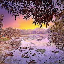 bd by মেহরাব সাদাত - Novices Only Landscapes