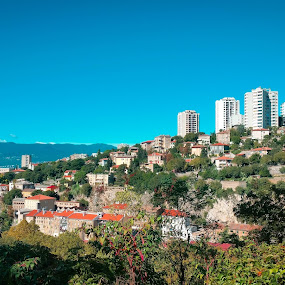 Rijeka by Antonio Knezevic - City,  Street & Park  Skylines ( sky, blue, city, rijeka, trees )
