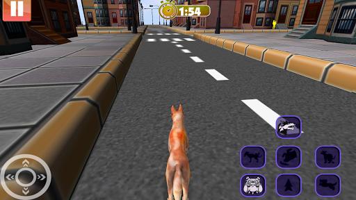 stray dog simulator game