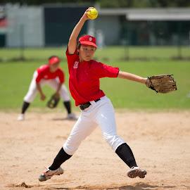 Softball by Eddie Seng - Sports & Fitness Baseball ( baseball, softball, sbsa fastpitch league 2013 )