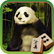 Mahjong: Animal Day Story