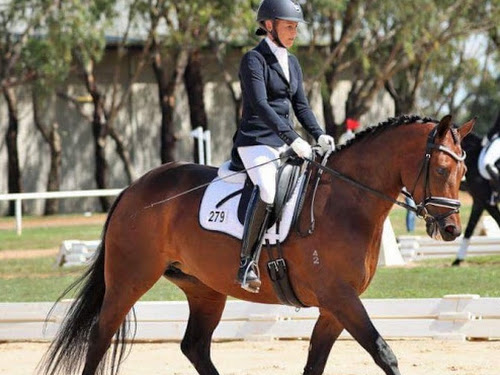 Anna Fullarton in action on Belle at the NSW State Dressage Championships at the Sydney International Equestrian Centre.