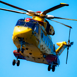 by Keith Sutherland - Transportation Helicopters ( canada, helicopter, flying, hovering, military )