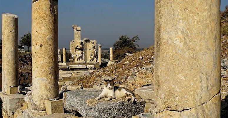 Ephesus di Rodema