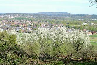 Photo: Ausblick über das Saartal