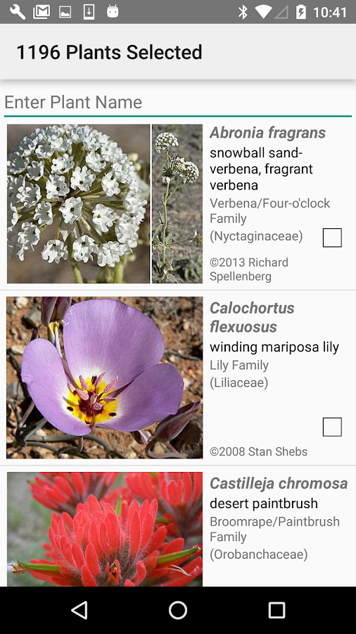 Utah Wildflowers- screenshot