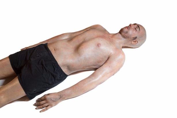 3D-печатный человек с максимально реалистичными внутренними органами