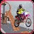 Crazy Racing Bike Stuntman