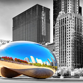 The Bean by Tony Roma - Buildings & Architecture Other Exteriors ( rally, bean, black and white, cubs, chicago,  )