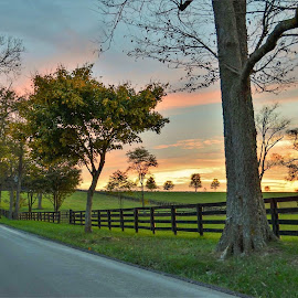 Sunset in September. by Jim Dawson - Uncategorized All Uncategorized ( backroads. kentucky. colors. sunset. trees. farms. )