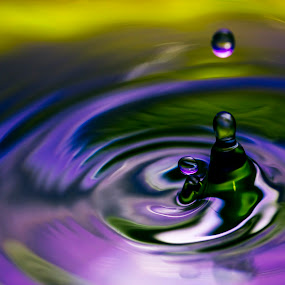 Swirl Up by Danny Andreini - Abstract Water Drops & Splashes ( water, splash, drop, swirl, up )