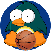 Basketball Bird